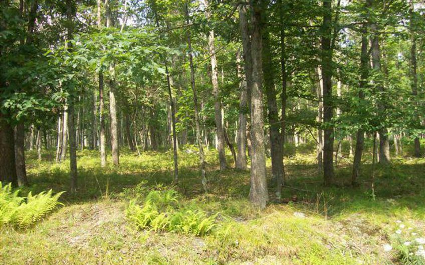 0.54 Acres in Hawley, Pike County Pennsylvania